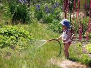 Как приучить ребёнка к даче