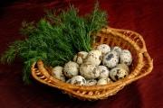 Как приготовить перепелиные яйца