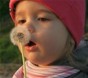 Аллергия на цветение: методы лечения
