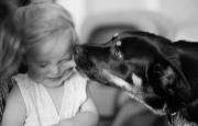 Как научить ребенка правильно играть с собакой