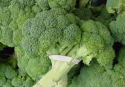 Полезные блюда с капустой брокколи
