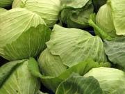 Блюда из капусты для детей