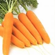 Морковь для здоровья и красоты