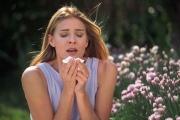 Безопасные препараты против круглогодичной аллергии