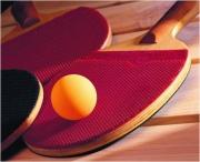 Как выбрать оборудование для настольного тенниса