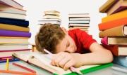 Что делать, если режим занятий определяет сам ребенок?