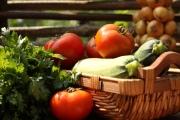 Питание для кормящей матери: лучшие рецепты
