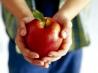 За здоровым питанием ребенка следит природа