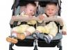Щедрый аист: если родились близнецы