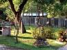 Новый взгляд на старый сад